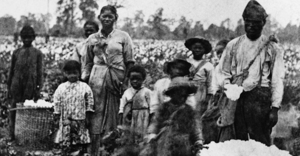 Une famille d'esclaves dans un champs de coton dans les années 1860