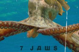 Le projet Nautilus de 7 Jaws sort de l'eau