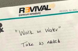 Eminem confirme que Revival est bien le titre de son prochain album