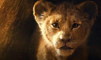 Le Roi Lion : une première bande-annonce du film vient de sortir