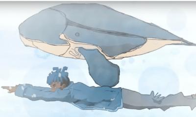 """XXXTentacion nage avec une baleine dans """"Sauce!"""""""