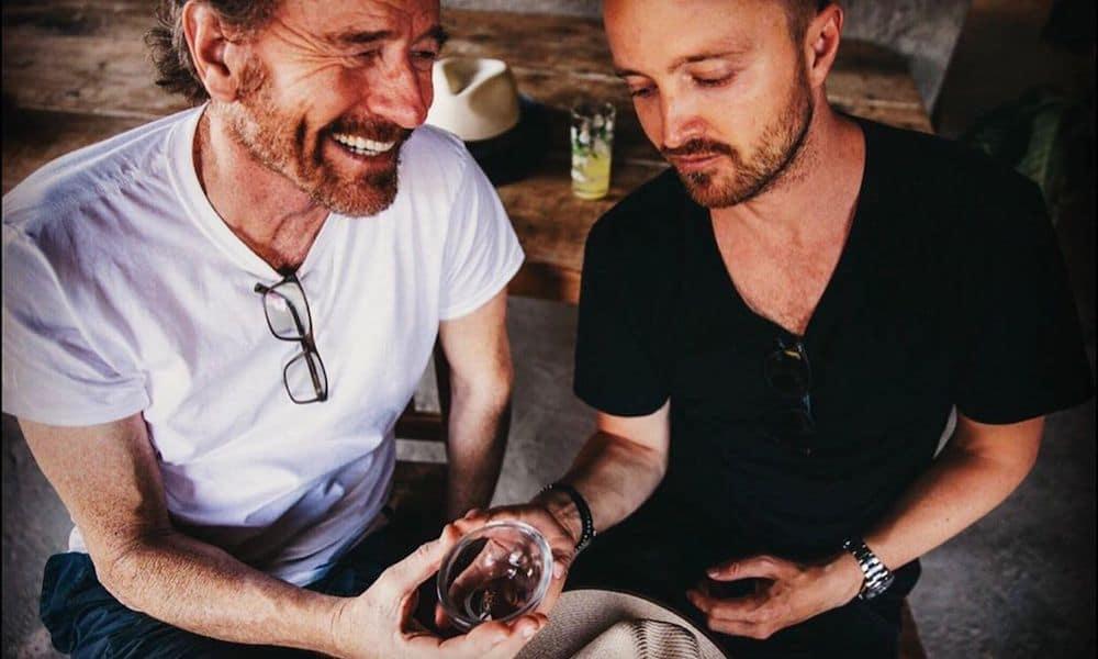 Breaking Bad : Bryan Cranston et Aaron Paul nous l'ont bien mise à l'envers