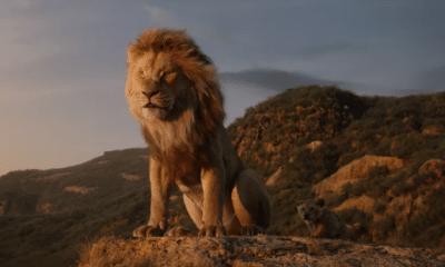 """Le Roi Lion : Dans le dernier teaser, Childish Gambino reprend """"Hakuna Matata"""""""